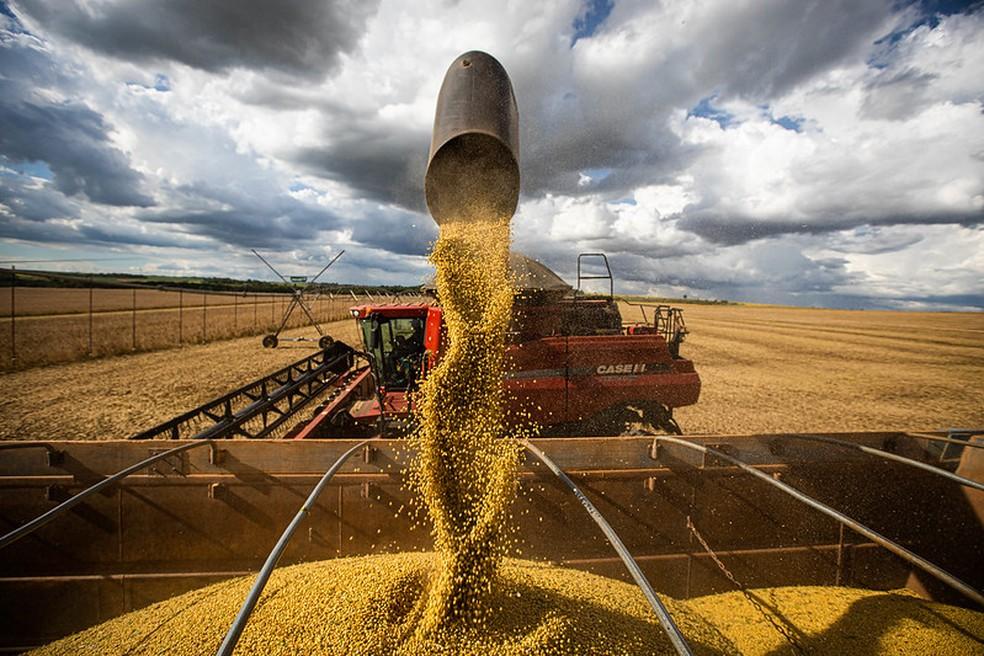 Soja — Foto: Divulgação/Confederação Nacional da Agropecuária