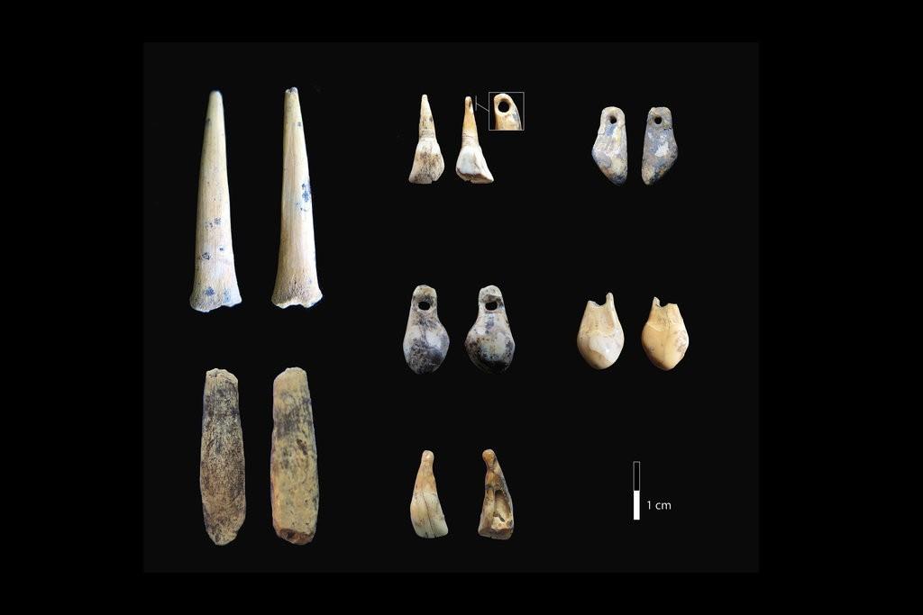 Ossos e dentes encontrados na caverna de Denisova (Foto: Katerina Douka)