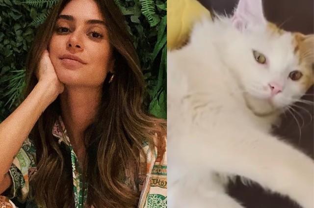 Thaila Ayala e o seu gato (Foto: Reprodução)
