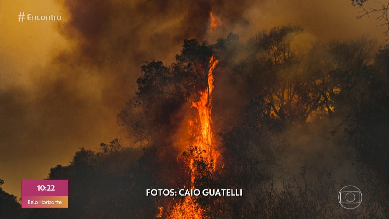 Fotógrafo retrata cenas de destuição no Pantanal