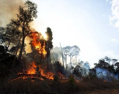 São Félix do Xingu é o município que mais emite CO2 no Brasil