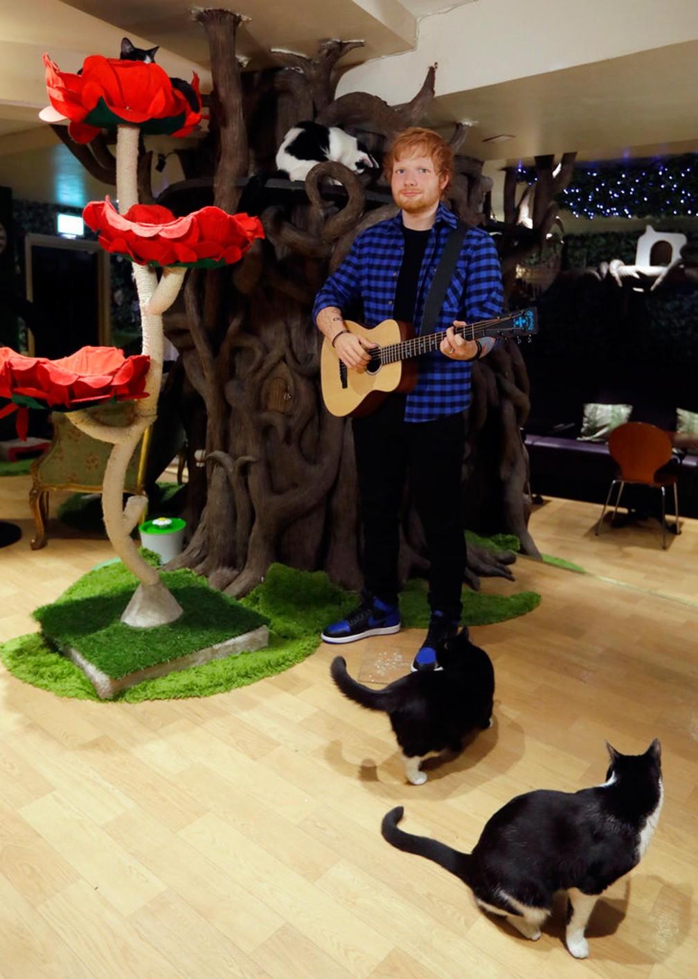 Ed Sheeran, cantor britânico, vira estátua de cera em Londres (Foto: Kirsty Wigglesworth/AP)