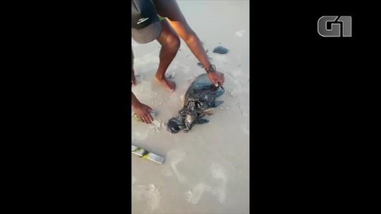 MPF reúne órgãos de fiscalização e limpeza para tratar sobre manchas escuras encontradas em praias do RN