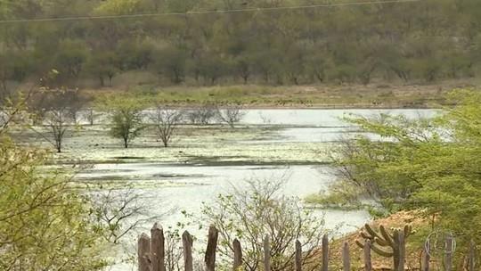 Chuvas acima da média em Pernambuco animam produtores do sertão
