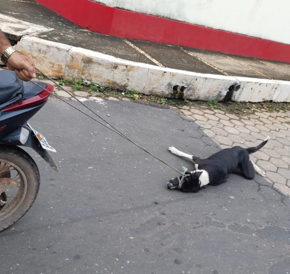Testemunhas afirmaram que o cachorro foi arrastado por vários metros — Foto: Divulgação/Redes Sociais