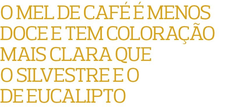 Café Mel (Foto:  )