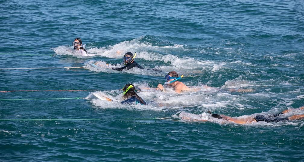 Turistas se divertem em mergulho puxado por um barco perto da Praia do Porto, em Fernando de Noronha — Foto: Fábio Tito/G1