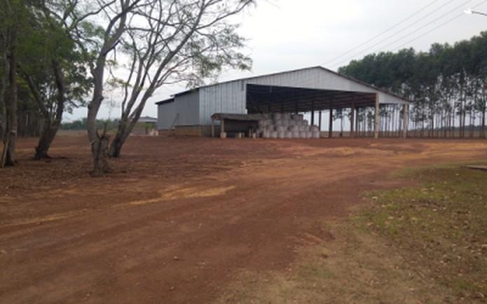 Fazenda Estrelinha, também conhecida por Fazenda Por do Sol III — Foto: Divulgação/Topo Leilões