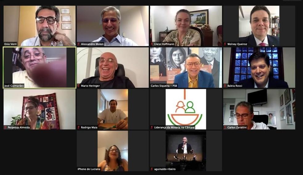 Reunião virtual de deputados da oposição com Baleia Rossi (MDB-SP) — Foto: Reprodução
