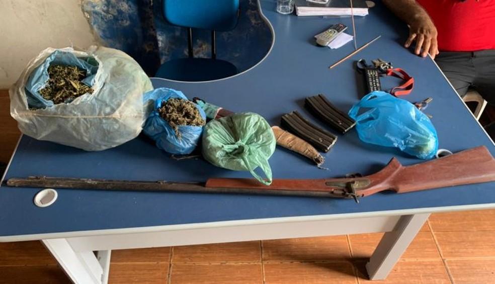 Polícia encontra plantação de maconha entre pés de milho e feijão no Maranhão — Foto: Divulgação Policia Militar