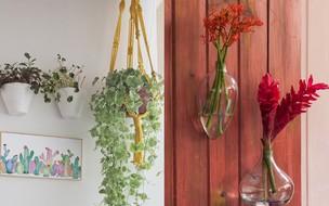 Saiba como decorar ambientes com foco em sustentabilidade