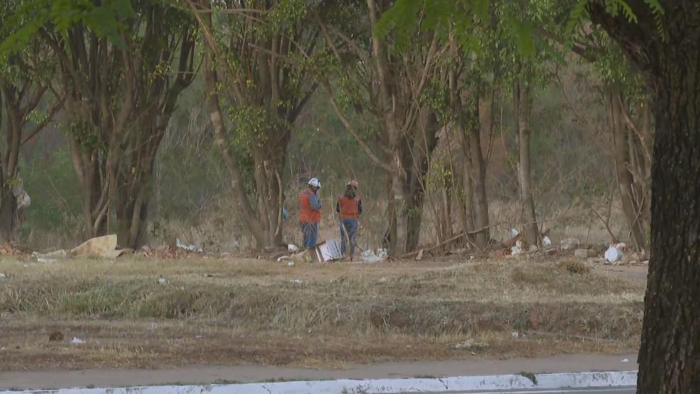Bomba de dinamite é detonada em região de mata no SIA, no DF — Foto: TV Globo/Reprodução