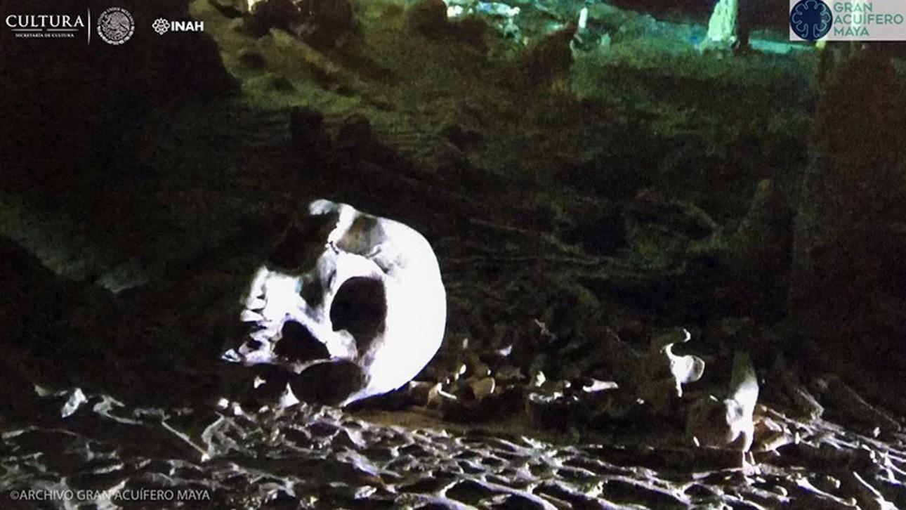 Crânio humano encontrado na caverna (Foto: INAH/GAM)