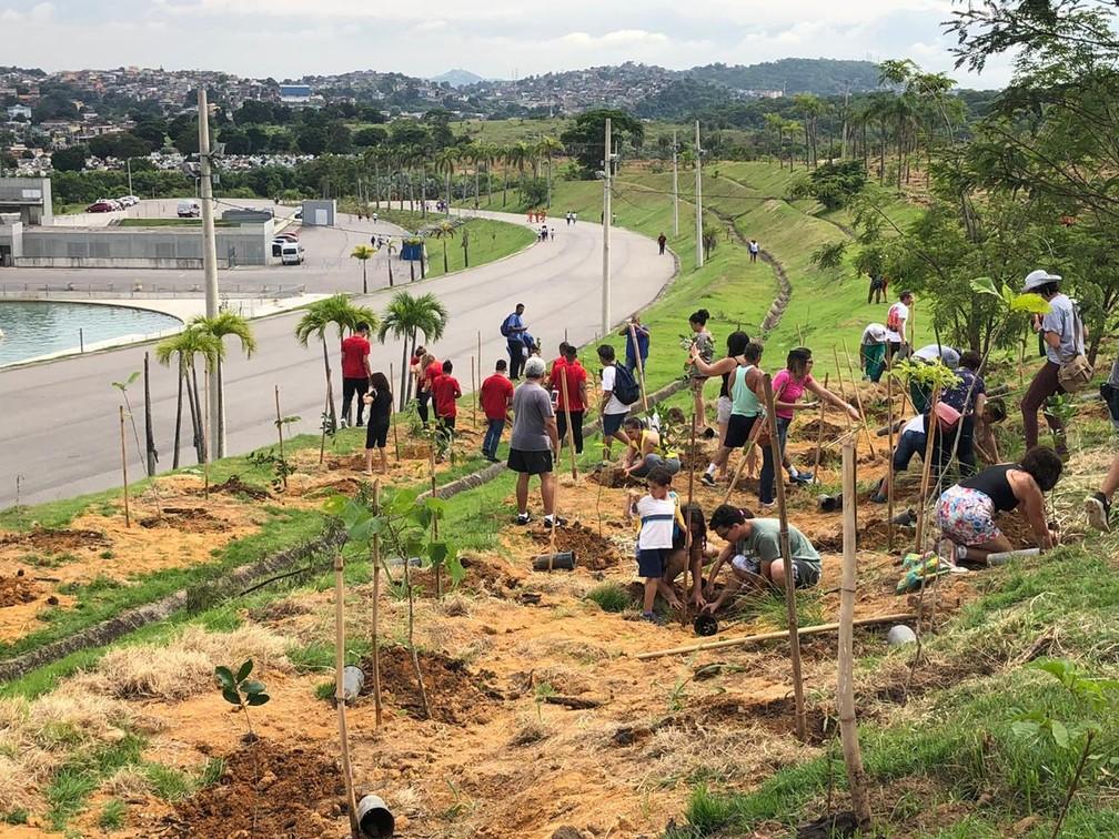 Voluntários plantam em Deodoro as mudas da cerimônia de abertura — Foto: Carlos Brito/G1