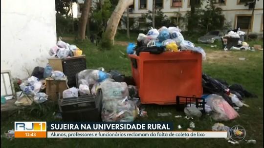 Universidade Federal Rural do Rio de Janeiro sofre com falta de coleta do lixo
