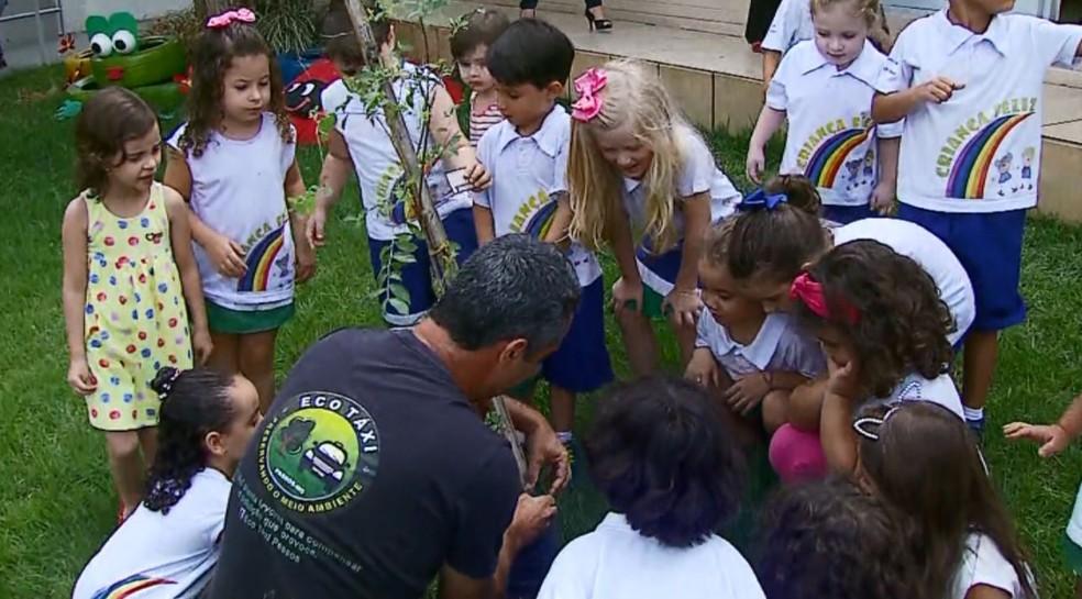 Crianças ajudaram em plantio de árvore de