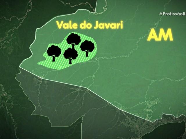 Busca por povos isolados na Amazônia celebra 400 edições do Profissão Repórter - Notícias - Plantão Diário