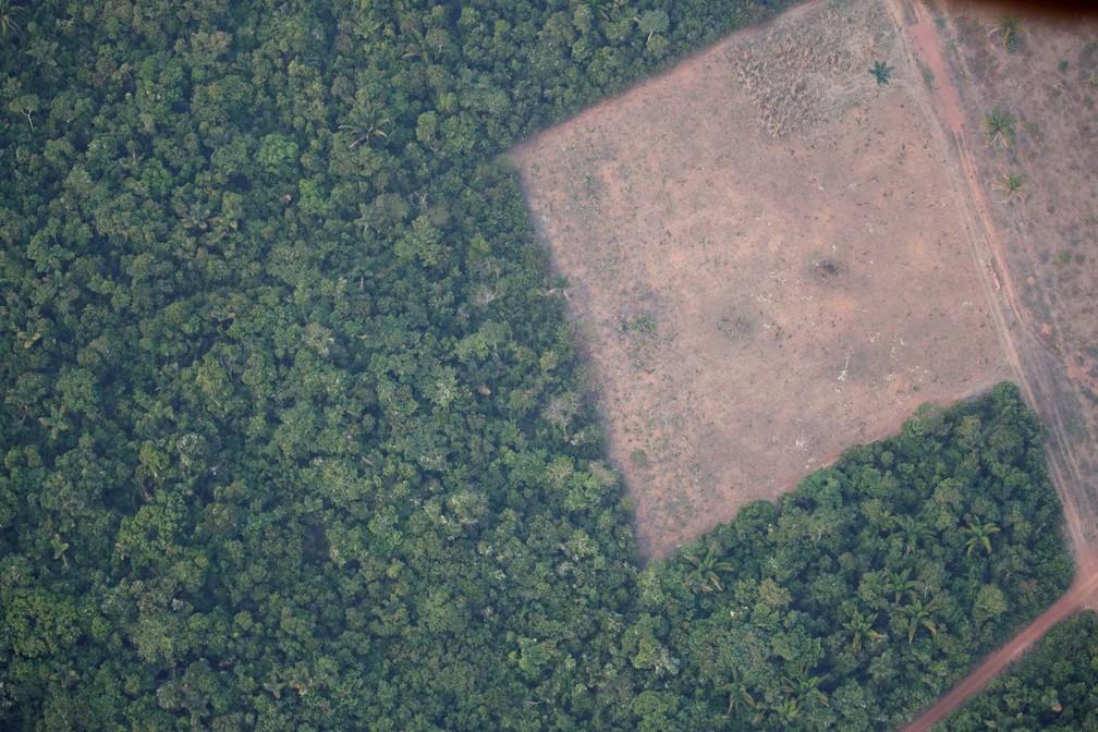 Desmatamento em região perto de Porto Velho (RO) — Foto: Arquivo/Ueslei Marcelino/Reuters