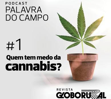 podcast-episódio1-cannabis (Foto: Globo Rural)