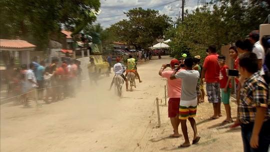 Corrida de Jumentos reúne espectadores em Maranguape; vídeo