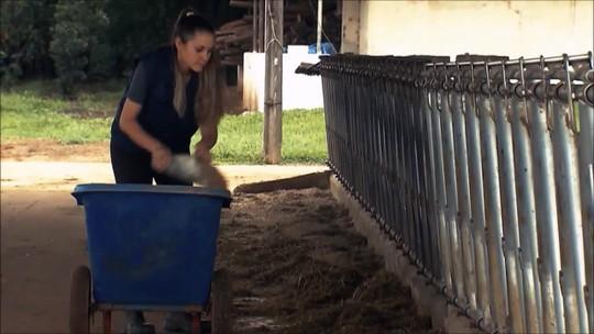 Agronegócio emprega 8 milhões de jovens no Brasil