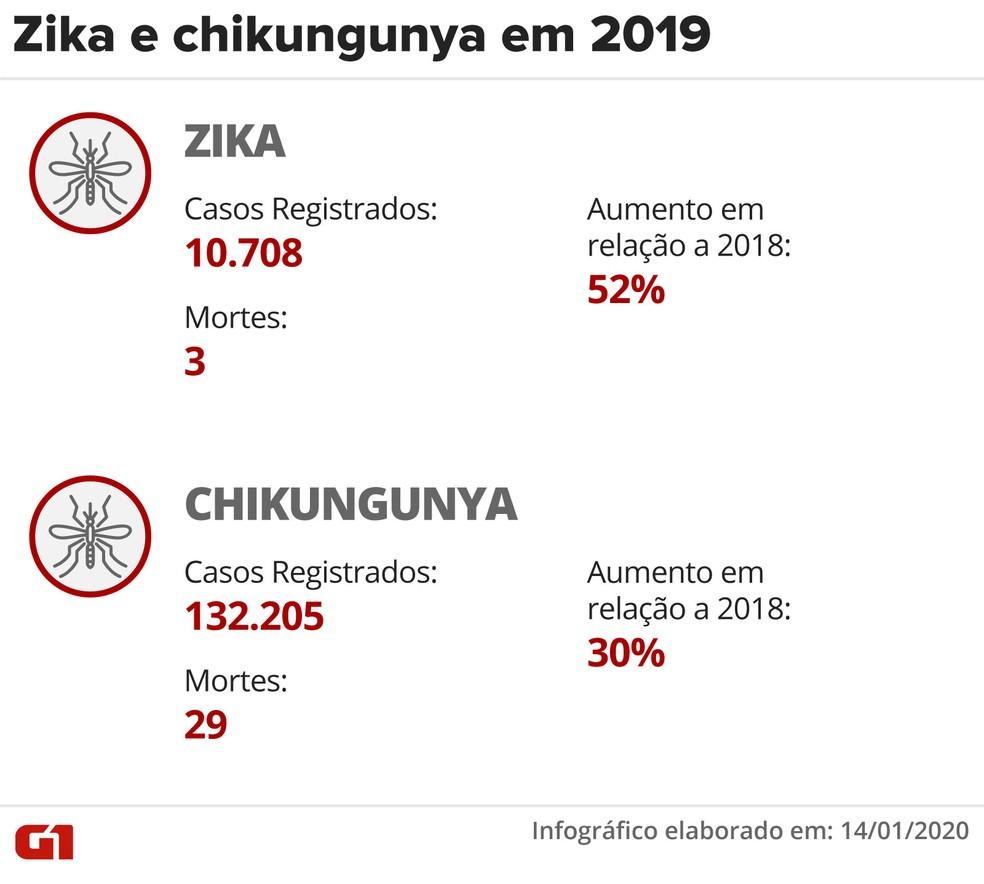 Infográfico mostra número de casos de Zika e Chikungunya em 2019 — Foto: Fernanda Garrafiel/G1