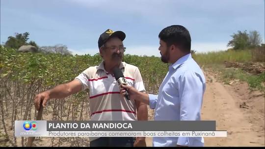 Produção de macaxeira e mandioca na Paraíba