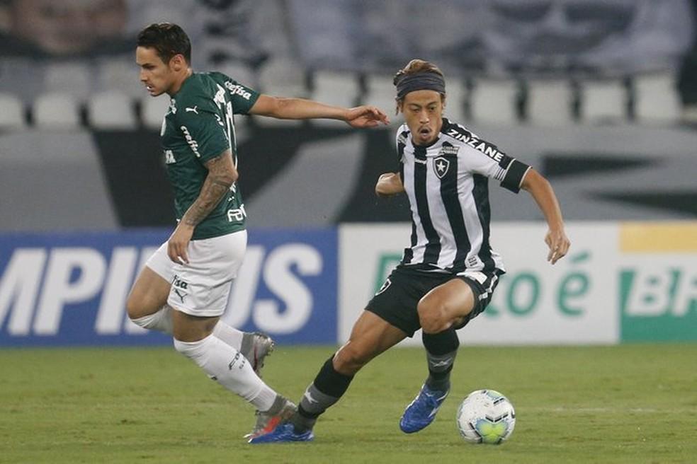 Botafogo x Palmeiras Nilton Santos — Foto: Vitor Silva/Botafogo