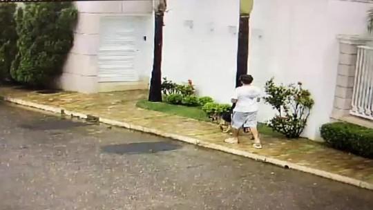Jovem flagrado agredindo cadela em Patos de Minas é foragido da Justiça em Divinópolis