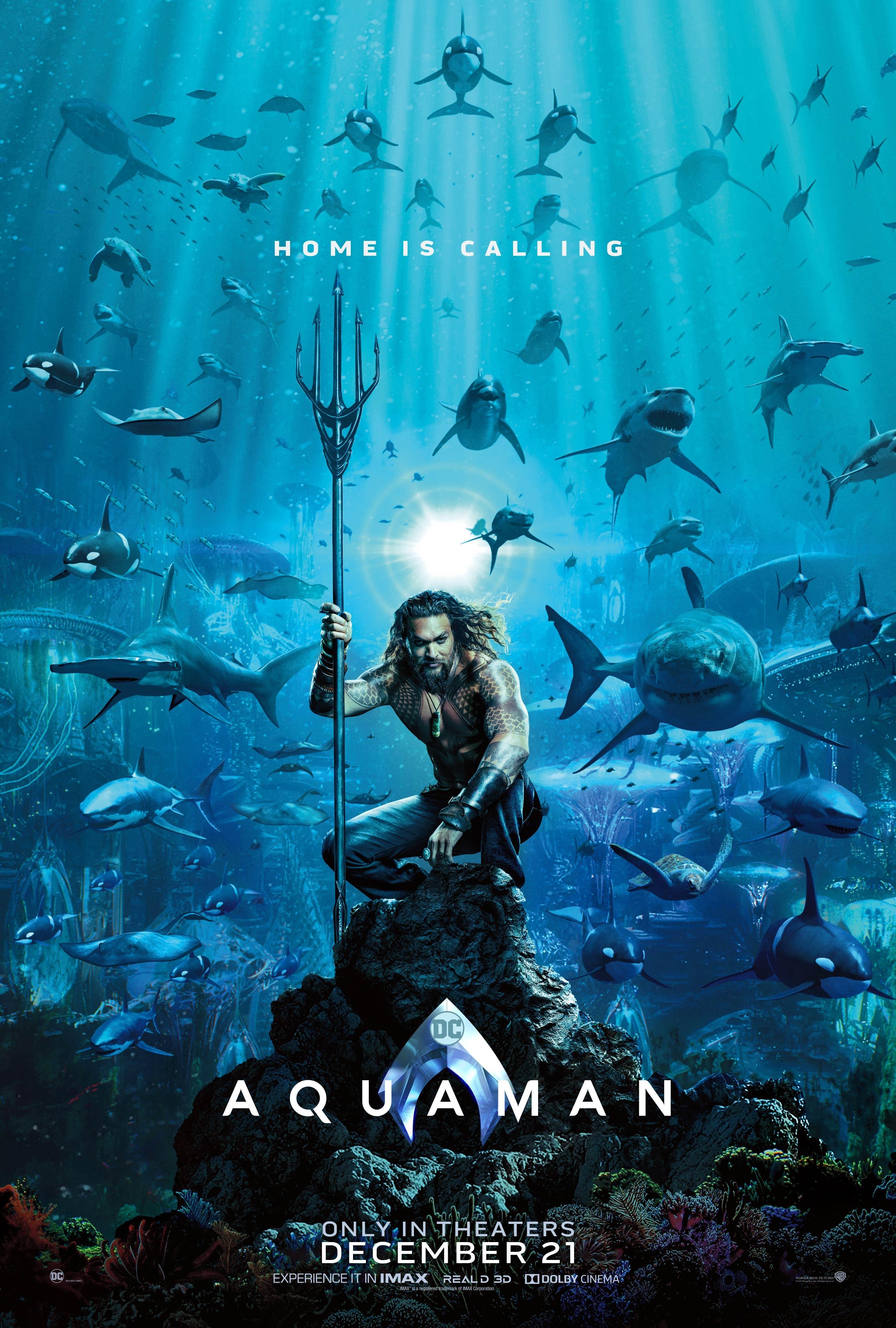 O ator Jason Momoa no pôster de Aquaman (Foto: Divulgação)