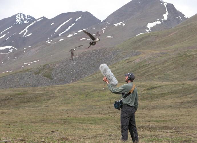 Gravando os sons da natureza (Foto: Reprodução)