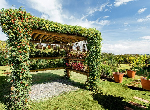O pergolado na lateral da casa é uma invenção da paisagista Paula Galbi: os vasos de orquídeas que os donos da casa mantinham espalhados pelo imóvel foram agrupados na estrutura de eucalipto tratado, como uma coleção (Foto: Pedro Abude/Casa e Jardim)