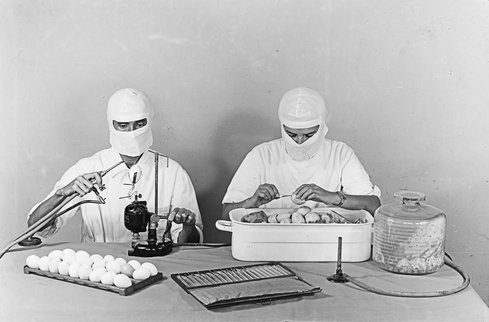 Produção da vacina contra febre amarela na primeira metade do século XX ; ovos são usados ainda hoje na fabricação de imunizantes (Foto: Acervo Casa de Oswaldo Cruz/Fiocruz)