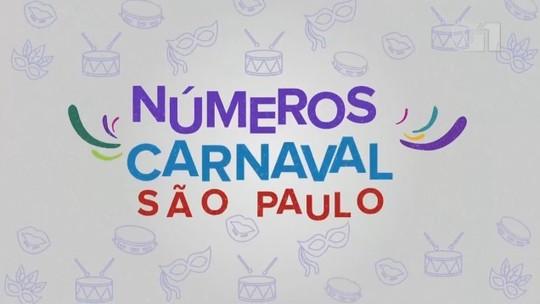 De público a compositores de samba: conheça os números do carnaval de SP