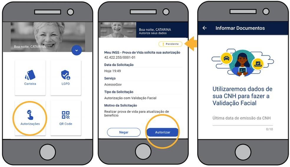 Acesse o Meu gov.br para confirmar identidade — Foto: Divulgação/INSS