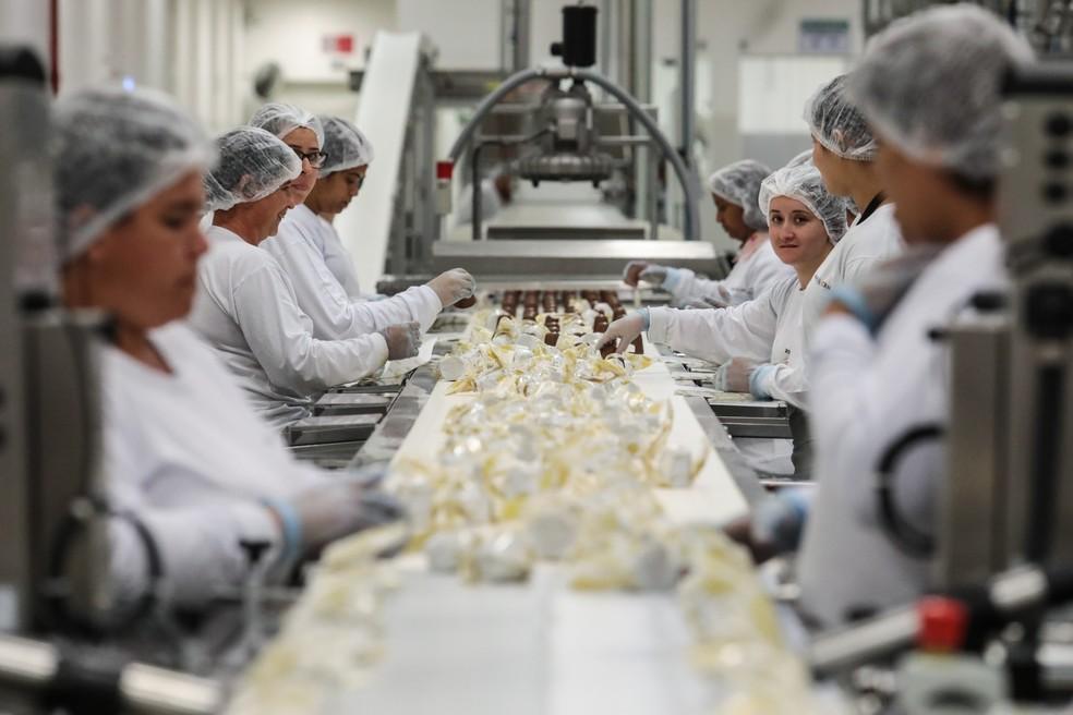 """Categoria """"alimentadores de linhas de produção"""" foi a ocupação que teve o maior aumento no número de geração de novas vagas. Na foto, funcionárias trabalham na linha de produção de fábrica de chocolates em Extrema (MG) — Foto: Fábio Tito/G1"""
