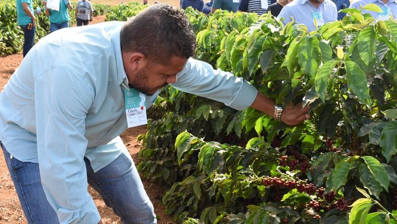 evento-cafe-unidades-demosntrativa-de-cultivares (Foto: Divulgação/Federação dos Cafeicultores do Cerrado)