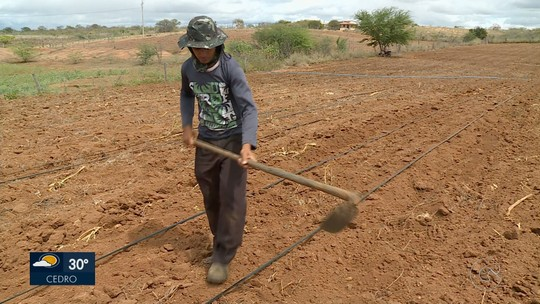 Sem abastecimento de água da transposição, agricultores do Sertão de PE enfrentam prejuízos