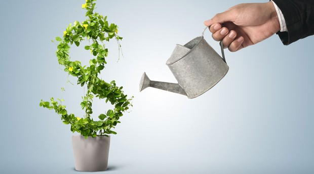 10 startups que apostam em negócios sustentáveis - Pequenas ...