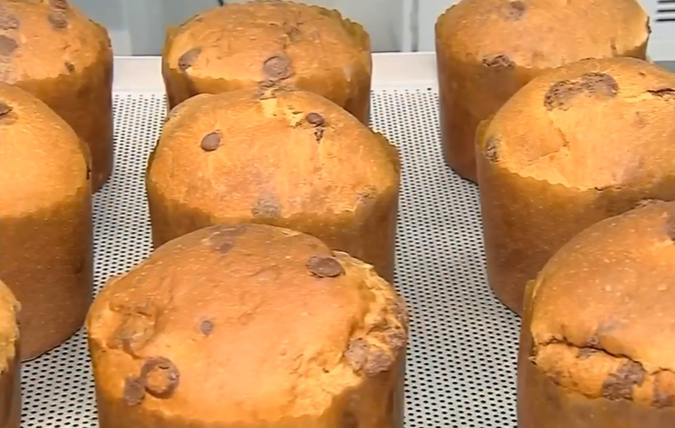 Festas de fim de ano e produção de panetones devem aumentar vendas de ovos — Foto: TV TEM/Reprodução