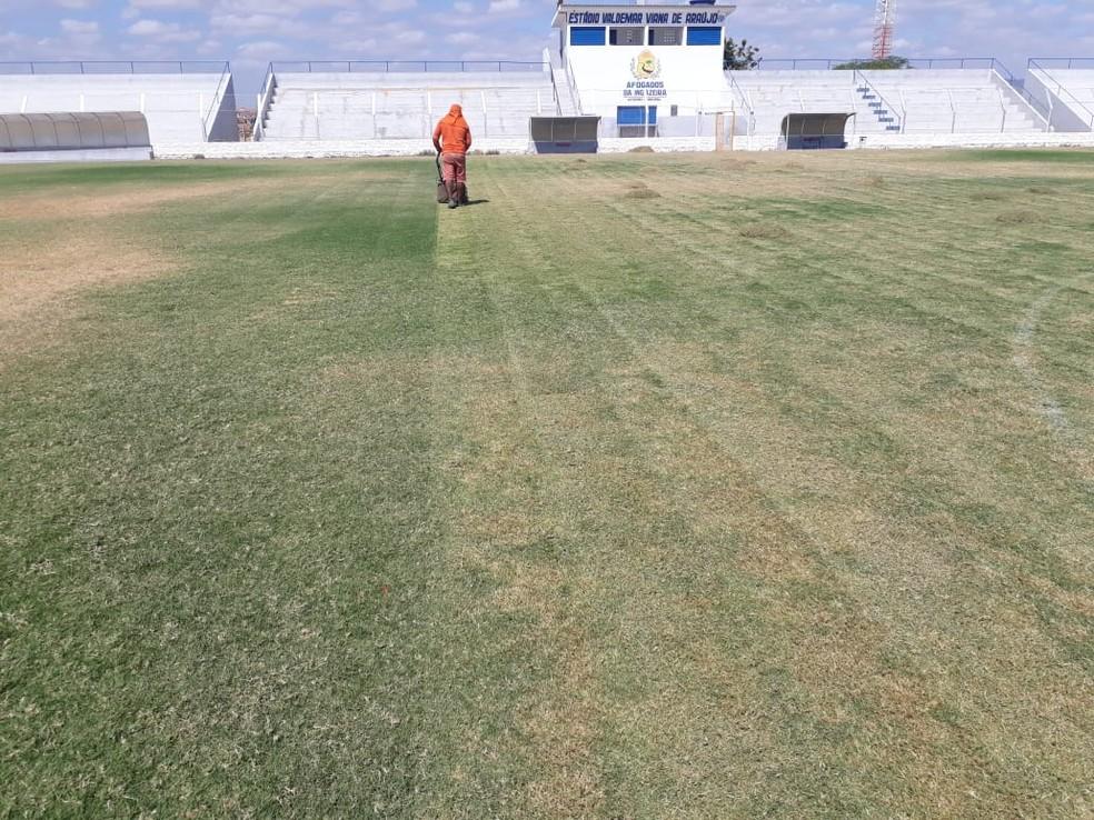 Revitalização do gramado foi iniciada — Foto: Afogados / Divulgação