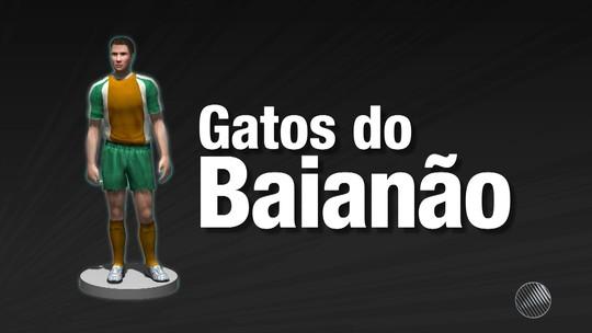"""Gatos do Baianão: participe e escolha o """"muso"""" do Campeonato Baiano 2017"""