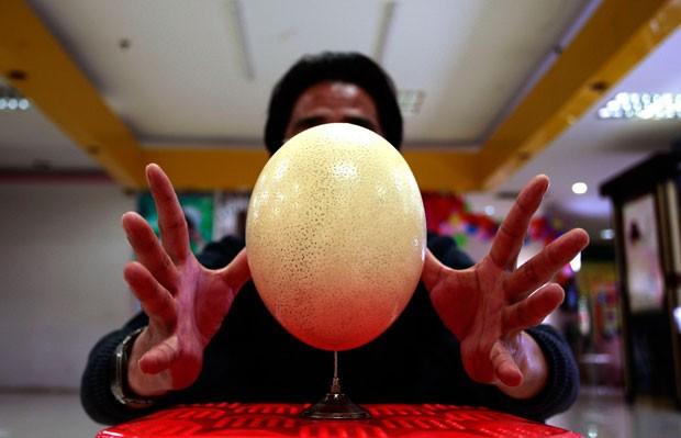 Chinês equilibra ovo de avestruz em agulha (Foto: Darwin Zhou/Reuters)