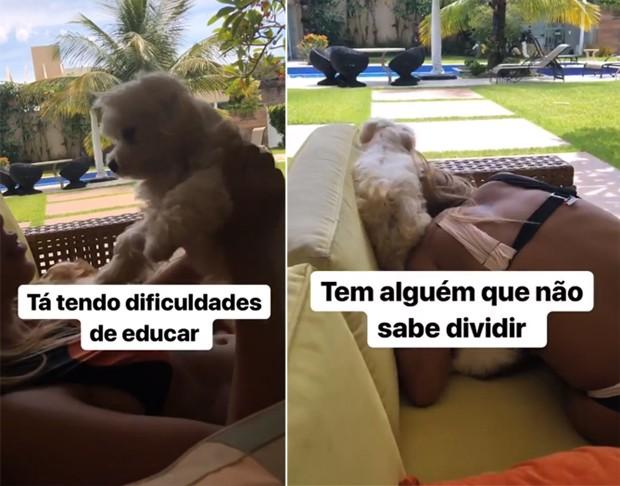 Anitta com cachorros (Foto: Reprodução/Instagram)