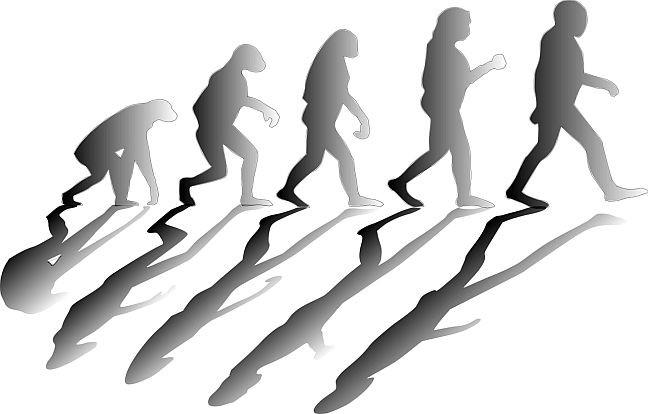 Evolução, Darwin (Foto: Geral)