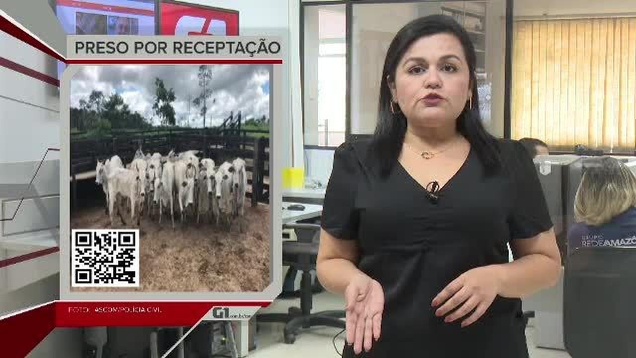G1 em 1 Minuto - AC: Produtor rural preso por receptar gado é solto após pagar fiança