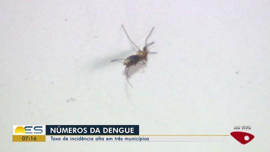 Espírito Santo tem mais de 6 mil de casos notificados de dengue