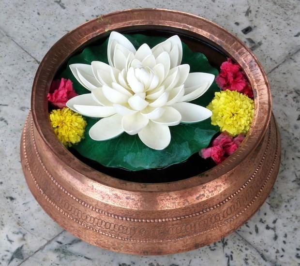 A flor de lótus é uma planta aquática (Foto: Thinkstock)