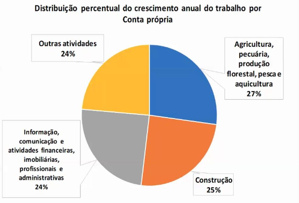 Distribuição do crescimento anual do trabalho por conta própria — Foto: IBGE/Reprodução