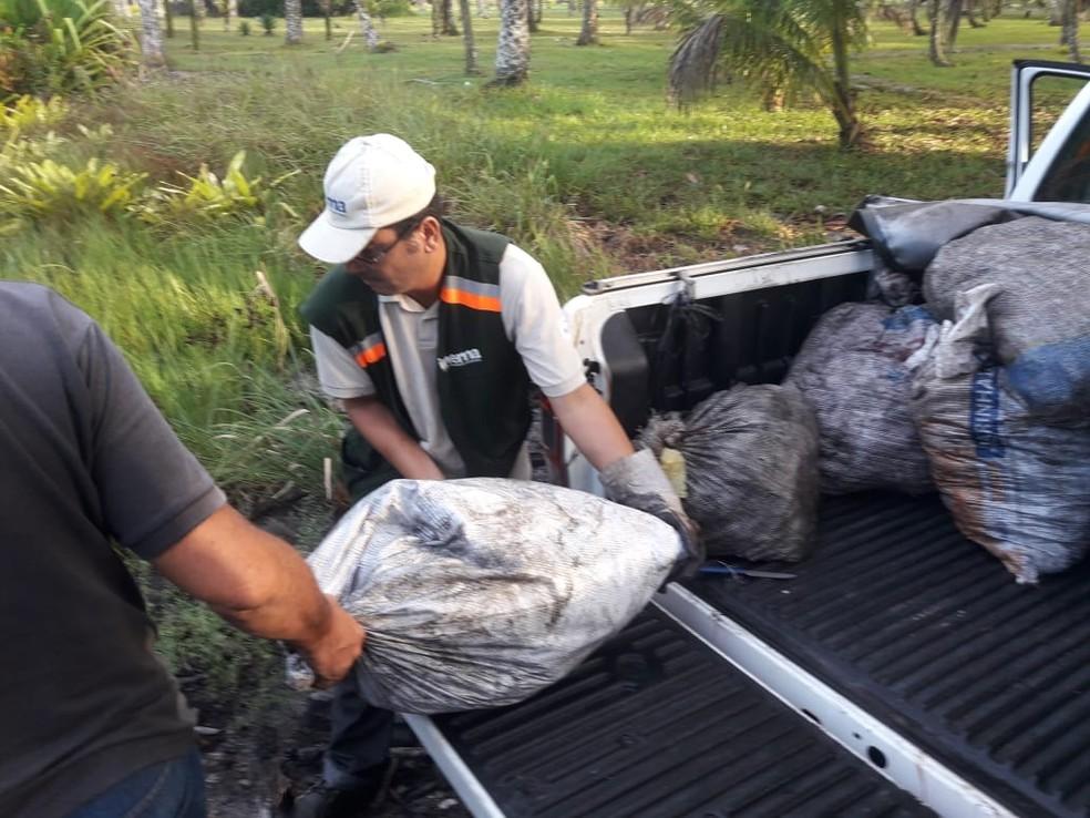 Alguns animais encontrados ainda estavam vivos e foram soltos no habitat natural — Foto: Secretaria de Segurança Pública da Bahia